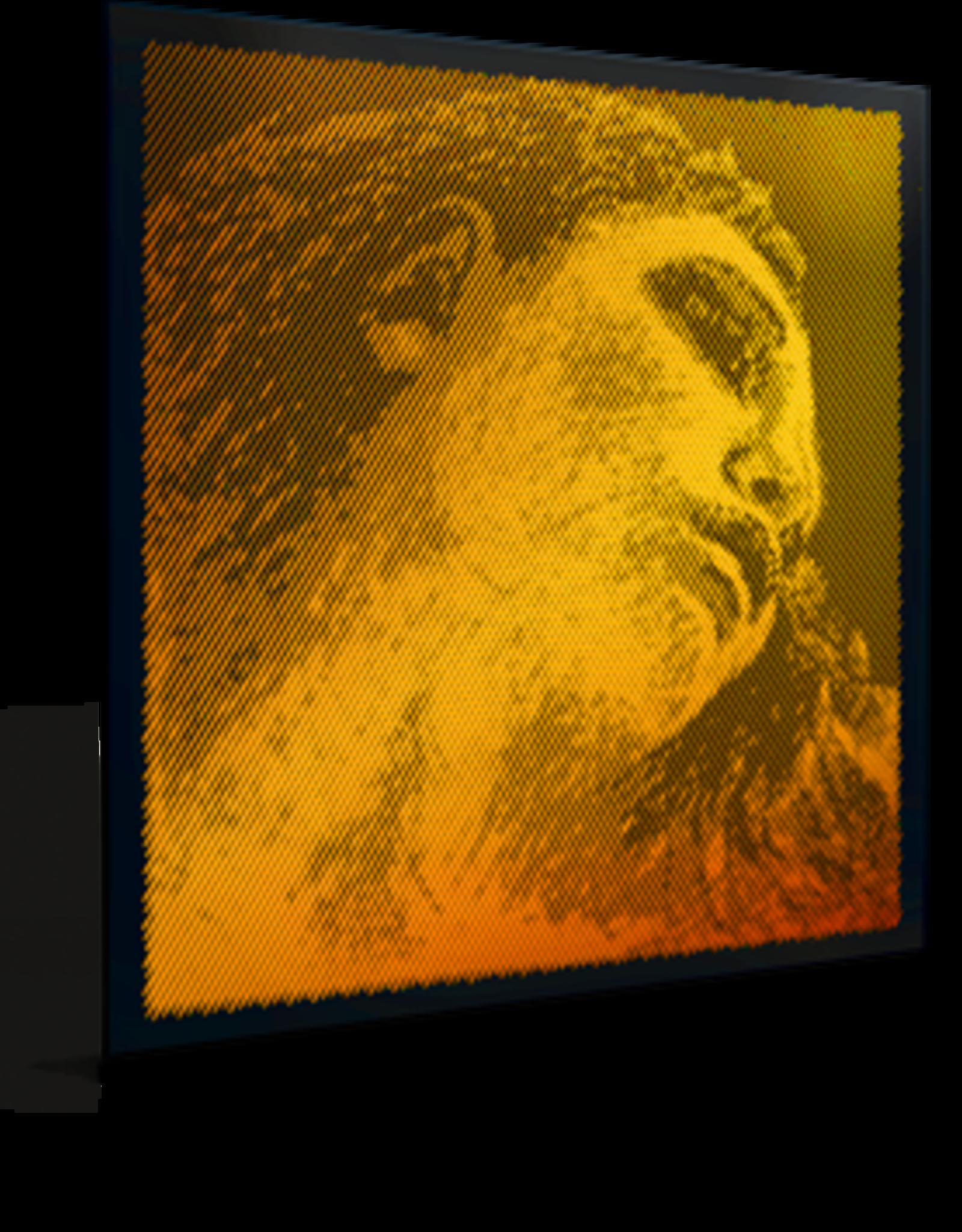 PIRASTRO Evah Pirazzi GOLD vioolsnaar, la (a-2), medium, aluminum