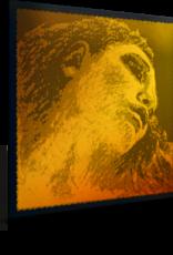 PIRASTRO Evah Pirazzi Gold vioolsnaar, re (d-3), 4/4