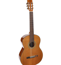 SALVADOR CORTEZ CC-10 Student Series klassieke gitaar