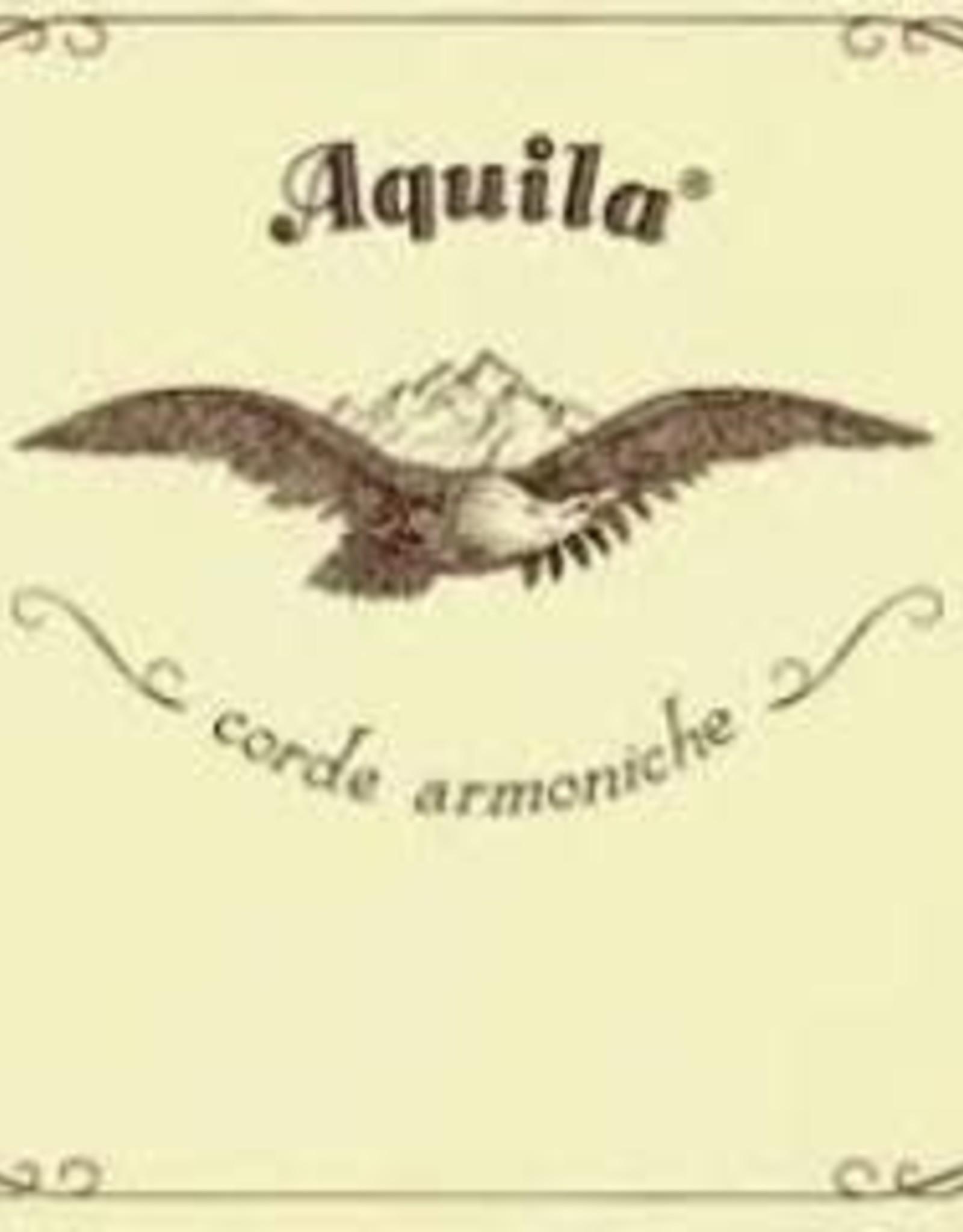AQUILA new nylgut 94