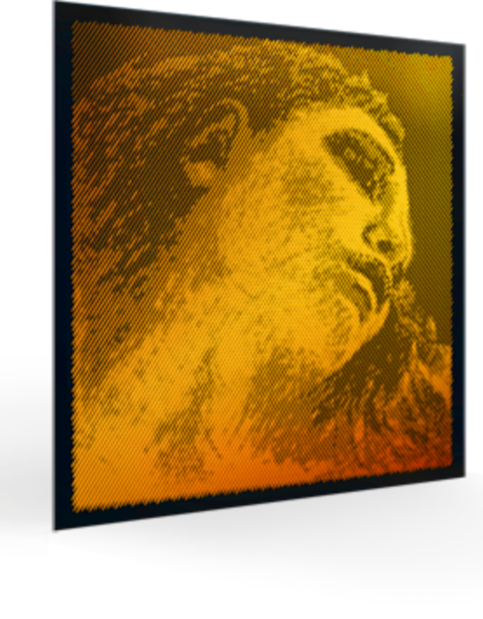 PIRASTRO Evah Pirazzi GOLD vioolsnaar e-1, 4/4, ball of loop end