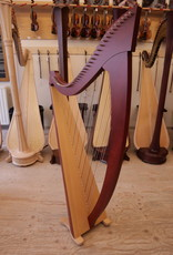Tweedehands harp Salvi Titan - Prijs op aanvraag - zo goed als nieuw