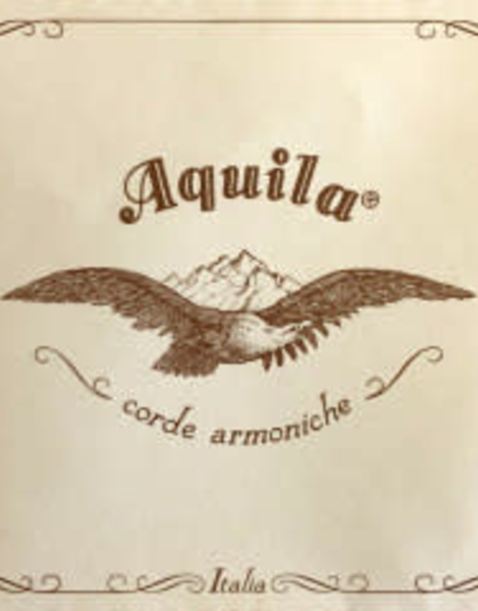 AQUILA darm, barokvioolsnaar, mi (e-1), 4/4, HV64