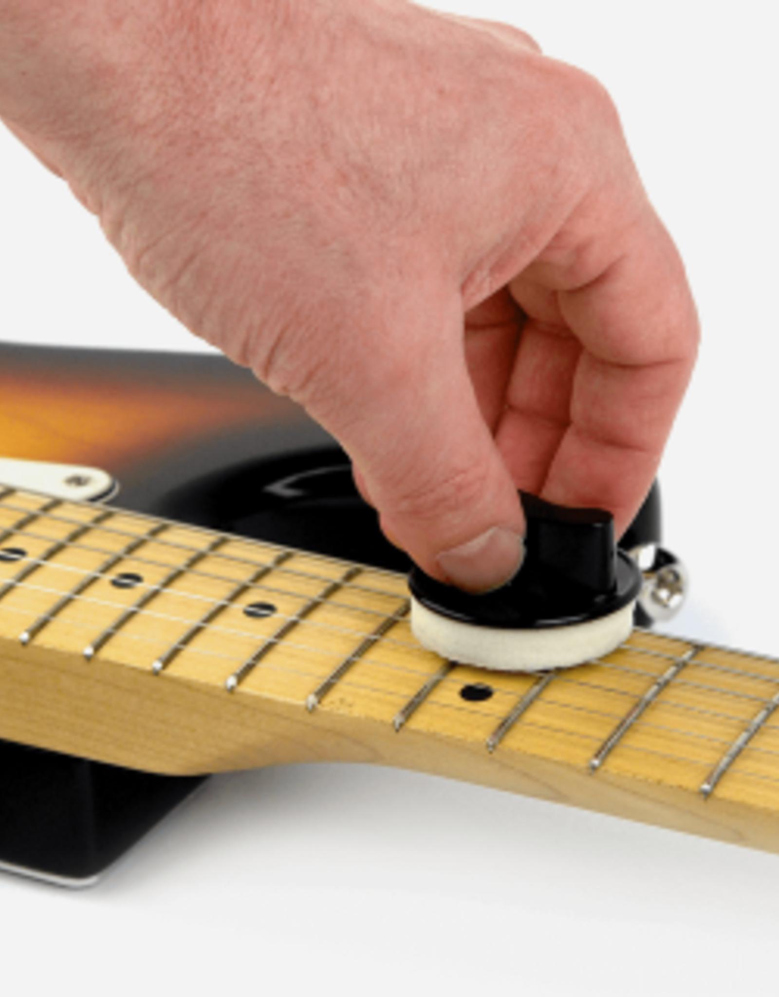 Snarenreiniger gitaar