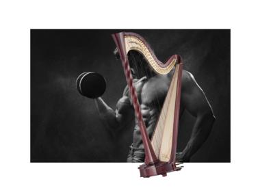 Jouw harp in topvorm!