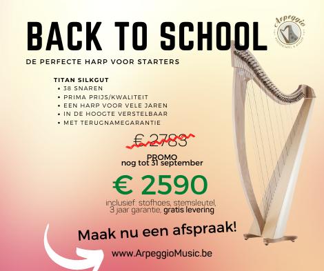 De 3 manieren om aan een harp te komen