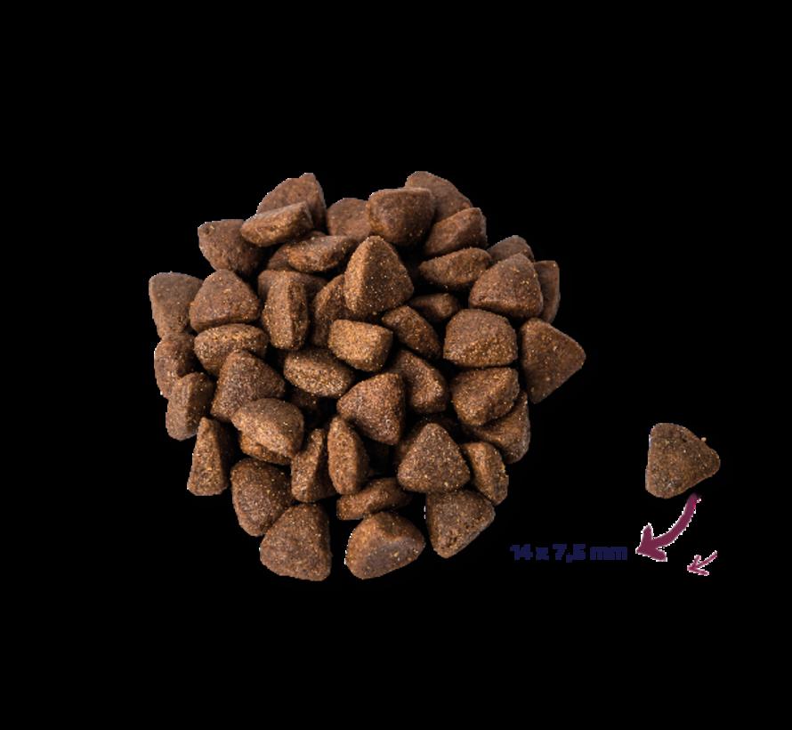 Renske droog hond adult graanvrij verse kip 2 kg