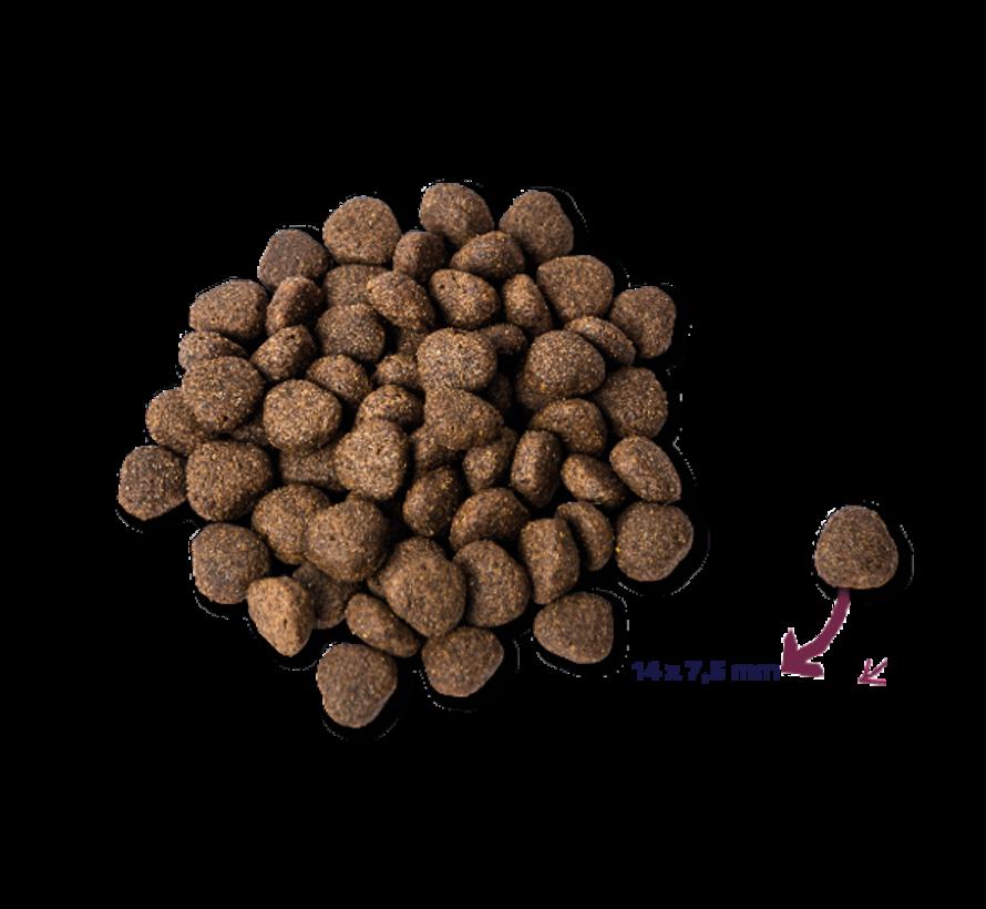 Renske droog hond adult graanvrij verse zalm 12 kg