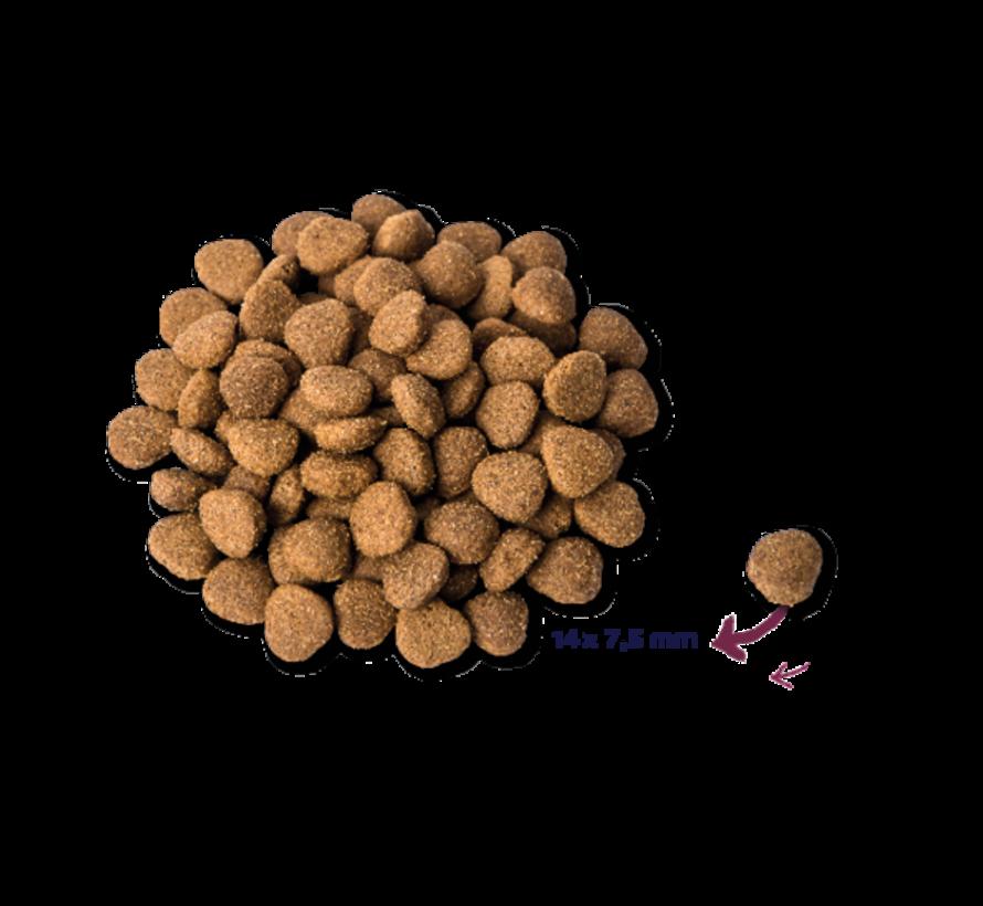 Renske droog hond adult verse kalkoen&eend 2 kg