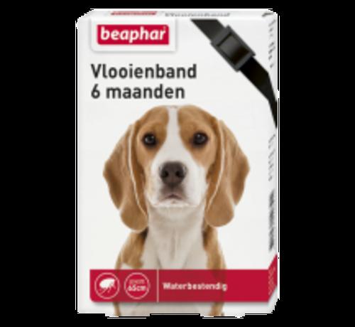 Beaphar Beaphar vlooienband 6 maanden hond zwart