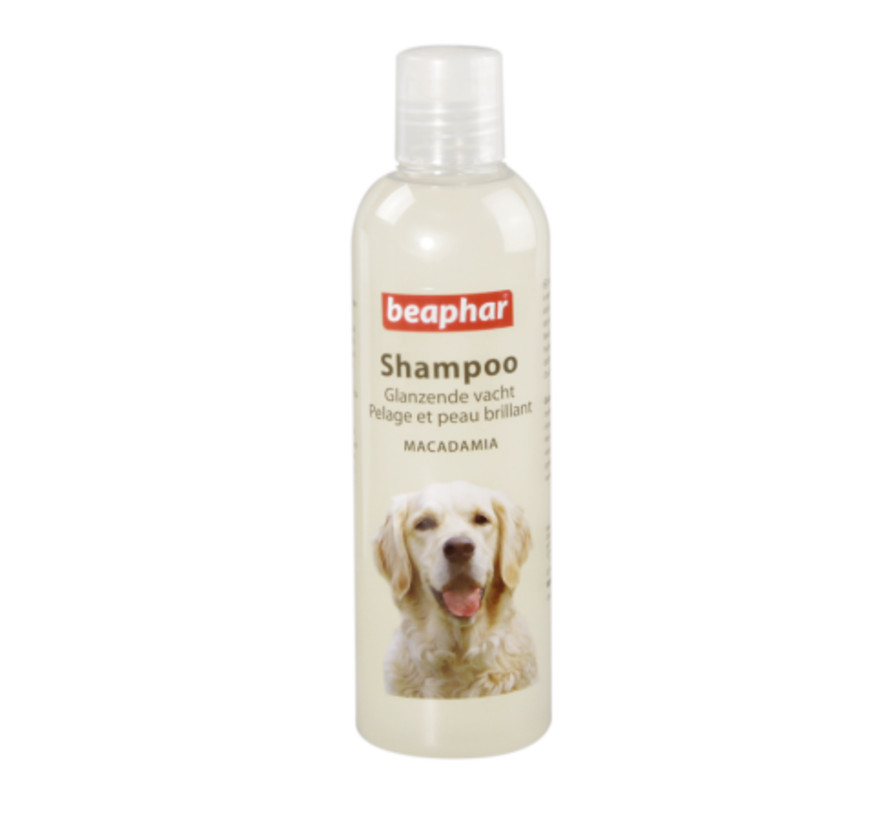 Beaphar glanzende vacht shampoo hond 250 ml