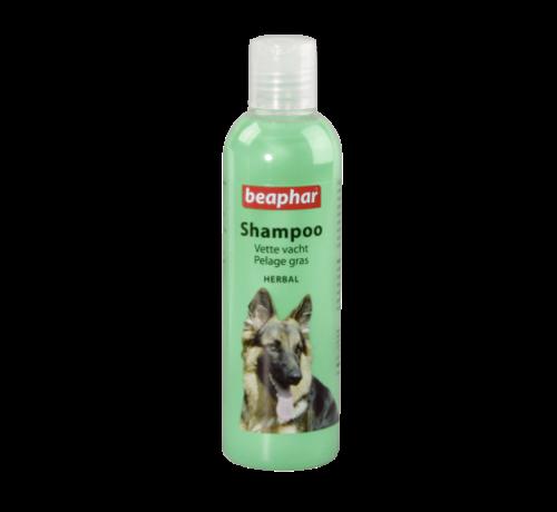 Beaphar Beaphar vette vacht shampoo hond 250 ml