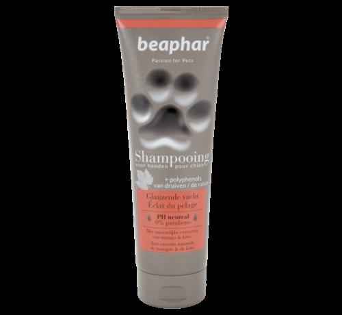 Beaphar Beaphar Premium shampoo glanzende vacht 250 ml