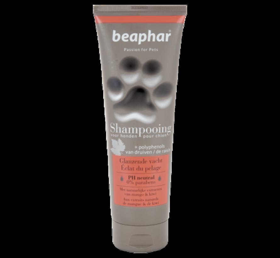 Beaphar Premium shampoo glanzende vacht 250 ml
