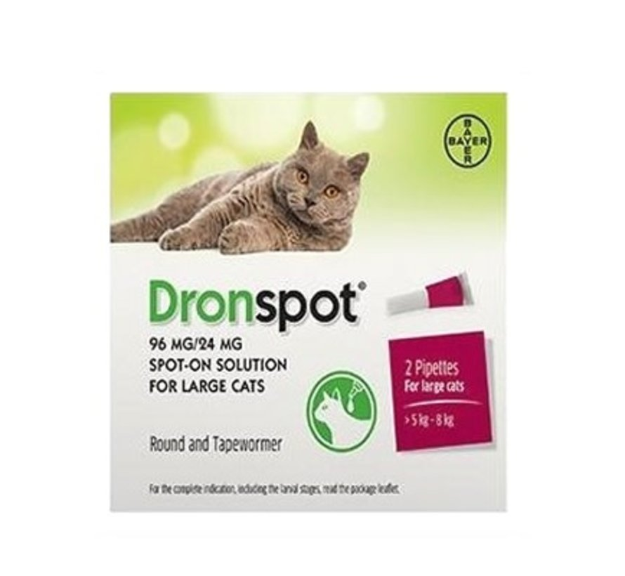 Dronspot grote katten 2 pip