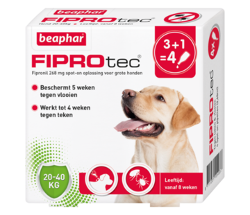 Beaphar Beaphar fiprotec hond 20-40 kg 4 pip