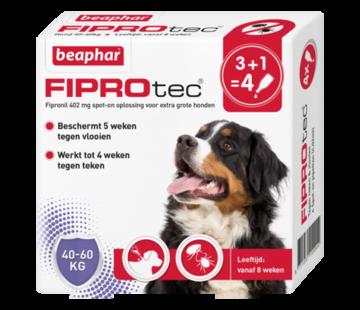 Beaphar Beaphar fiprotec hond 40-60 kg 4 pip