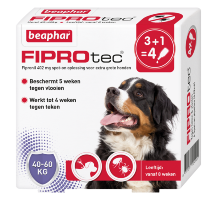 Beaphar fiprotec hond 40-60 kg 4 pip