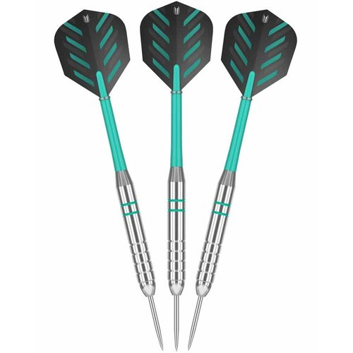 Target darts Rob Cross Silver Voltage 24 gram Dartpijlen