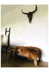 Schapenvacht IJsland hazelnoot bruin  115x75x5cm