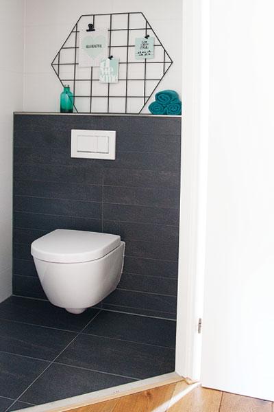 Showrek toilet