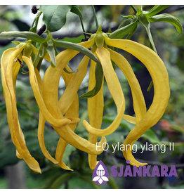 Sjankara EO Ylang Ylang II