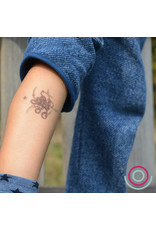 Djeco Djeco - tatoeages, piraten