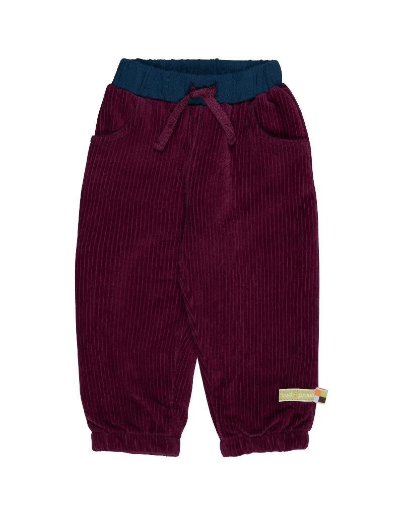 Loud+Proud Loud+Proud - pants, cord, plum (3-16j)