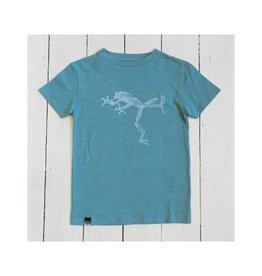 Lion of Leisure T-shirt, aqua, frog (3-16j)