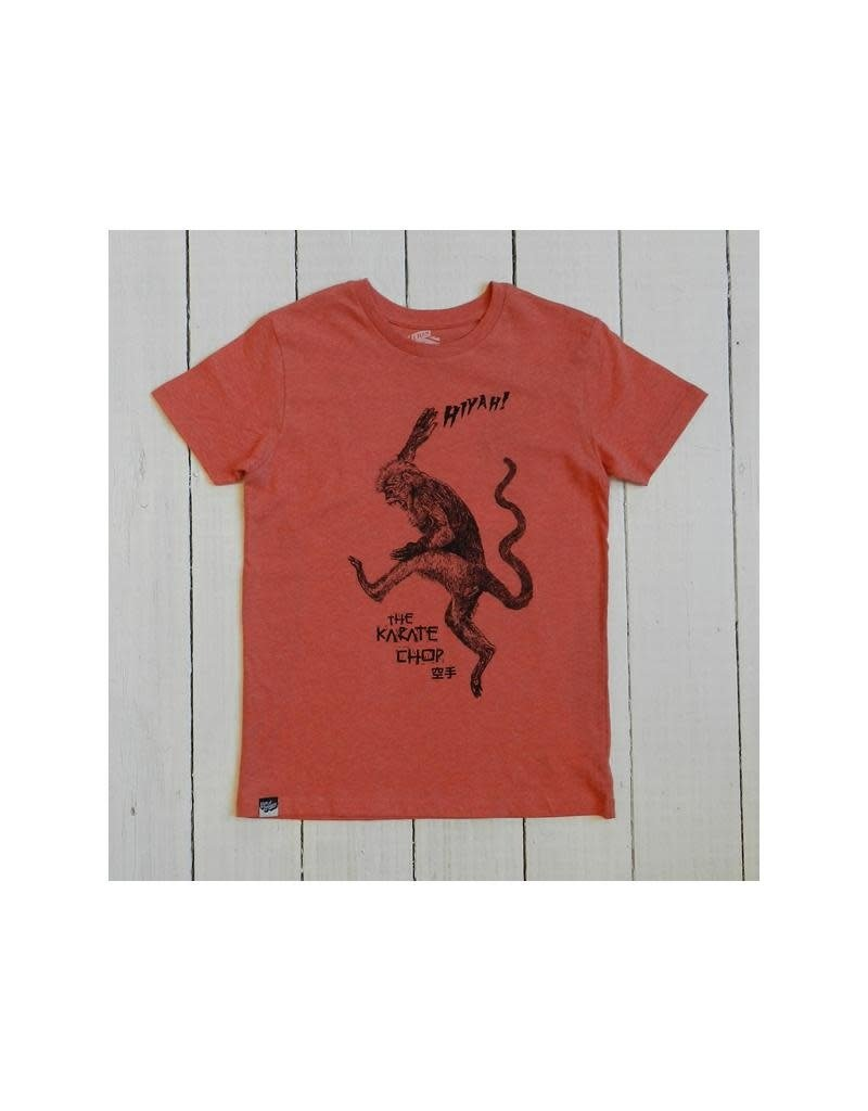 Lion of Leisure Lion of Leisure - T-shirt, red melange, monkey (3-16j)