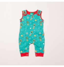 Little Green Radicals Night sky everyday dungarees (0-2j)