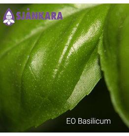 Sjankara EO Basilicum