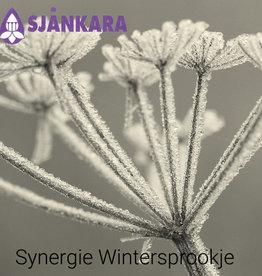 Sjankara Synergie Wintersprookje