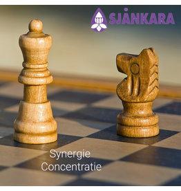 Sjankara Synergie Concentratie