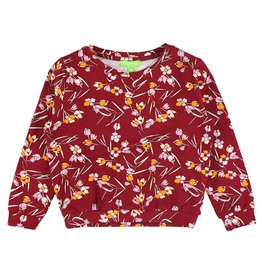 Lily Balou Shirt, floral-fall (3-16j)