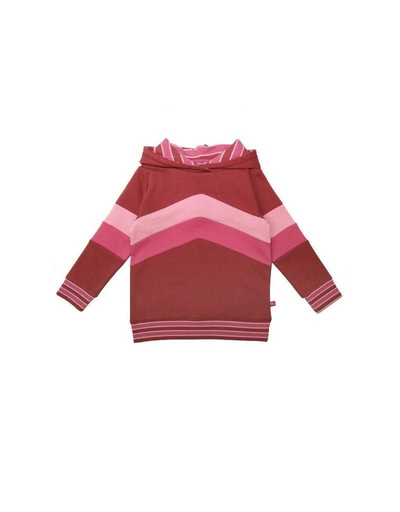 Enfant Terrible Enfant Terrible - Hoodie mit Colourblocking, rost-erika (3-16j)