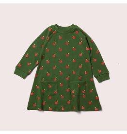 Little Green Radicals Kleed, Red apples (0-2j)