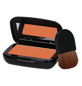 MAKE-UP STUDIO COMPACT EARTH POWDER M2