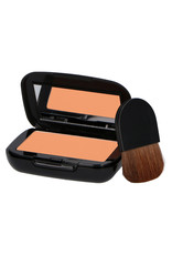 MAKE-UP STUDIO COMPACT EARTH POWDER M1