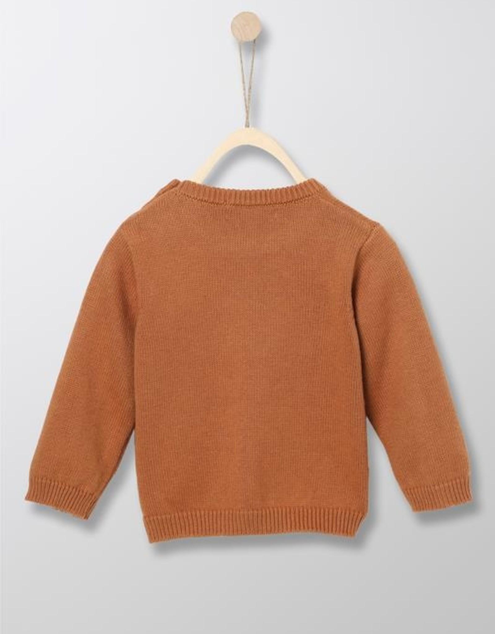 Pull Intarsi Knit Brown