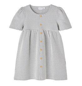Dress Stripe/Blue