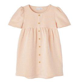 Fame Dress Stripe/Orange