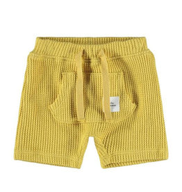 Hardy SweatShorts Yellow