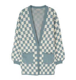 Isnel Cardigan Checkered/Blue