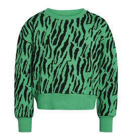 Tilina Sweater Green