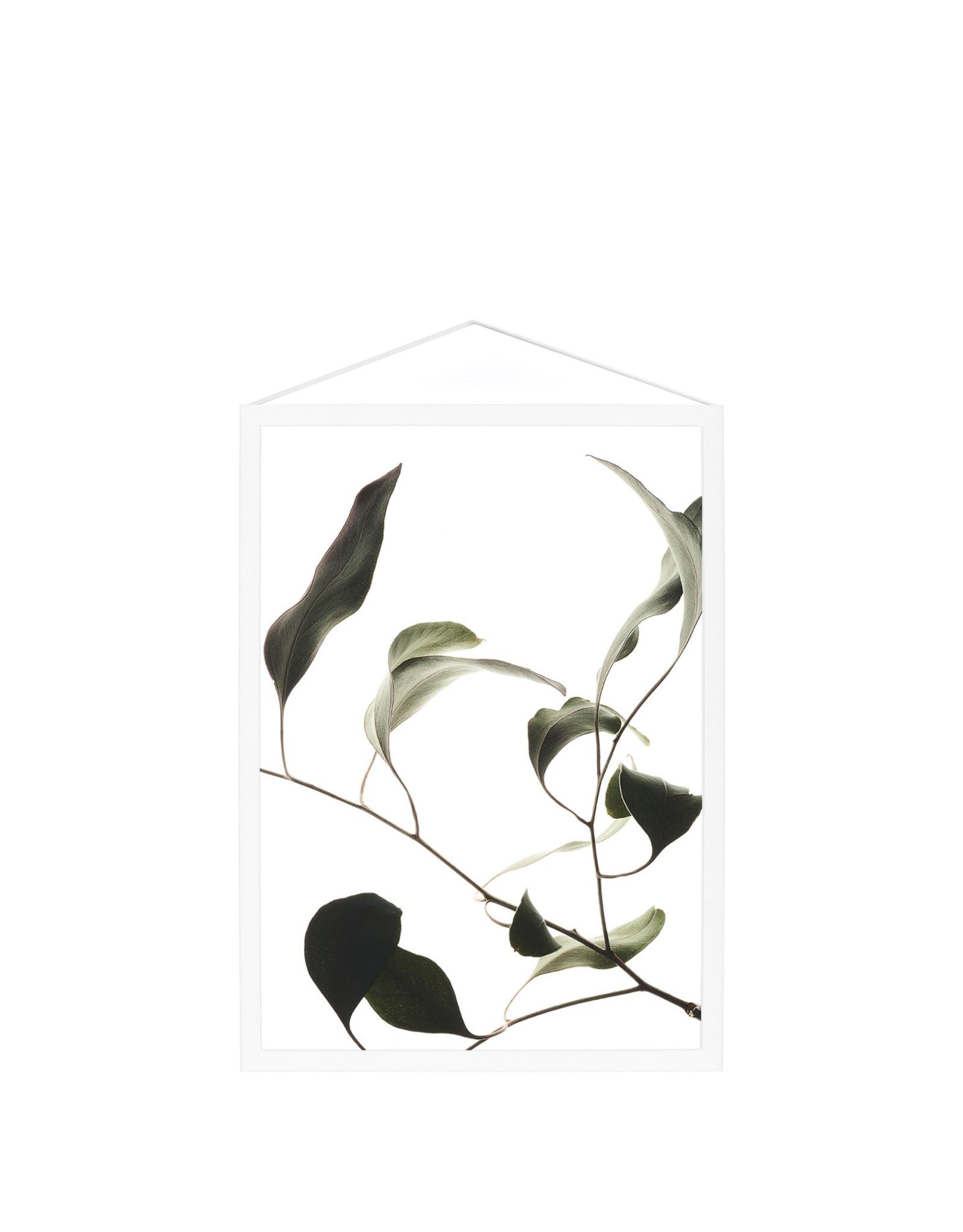 Moebe Moebe Floating Leaves 09 A4