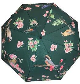 Schirm Grün mit Vögel