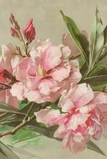 Meander Geurzakje Oleander