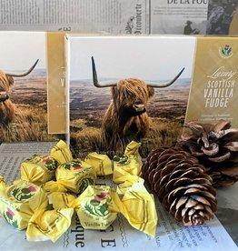 Highland Cow Vanilla Fudge