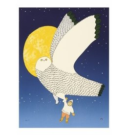 Cape Dorset The Owl and the Boy